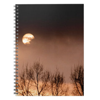 Trees Ominous Evening Note Books