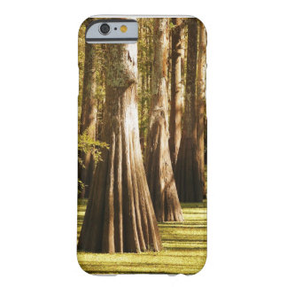 Trees on Parade Barely There iPhone 6 Case