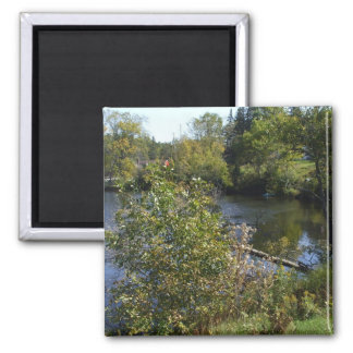 Trees on River Bank Square Magnet