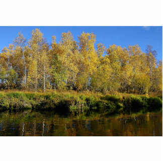 Trees on the Kanuti River Photo Cut Out