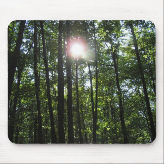 Trees Perspective Mouse Pad