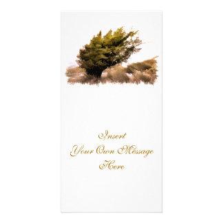 TREES PHOTO CARD