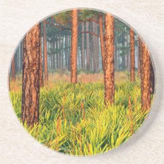 Trees Pines Escape Ranch Florida Drink Coasters