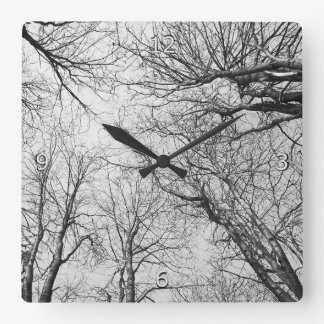 Trees Reaching For The Sky Square Wall Clock