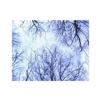 Trees reaching into the sky stretched canvas print