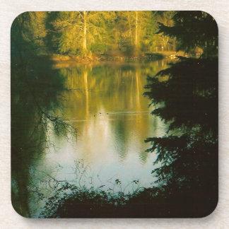 Trees Reflecting on Lake Coaster