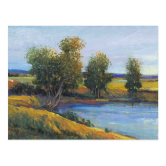 Tree's Reflection II Postcard