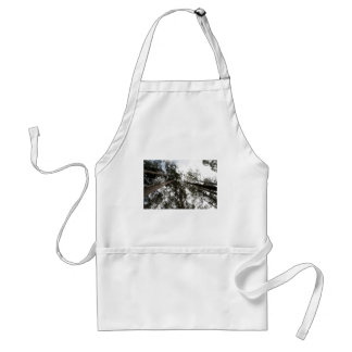 Trees rising high in the sky standard apron