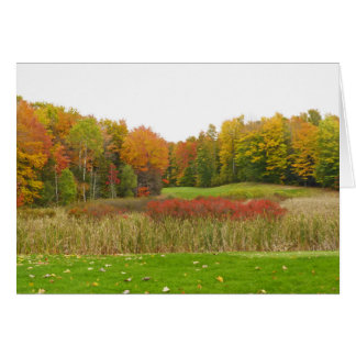 """""""TREES SHOW OFF FALL COLOR""""/ MICHIGAN LOCALE NOTE CARD"""