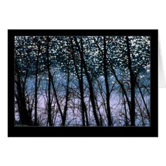Trees & Sun Sparkles Note Card