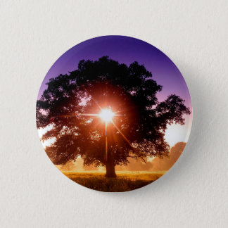 Trees Tree Of Life Devon England 6 Cm Round Badge