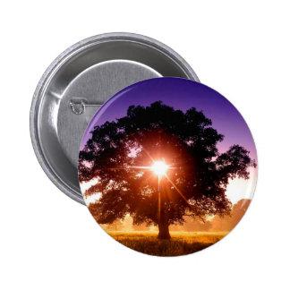 Trees Tree Of Life Devon England 6 Cm Round Badge