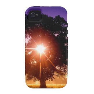 Trees Tree Of Life Devon England Vibe iPhone 4 Cases