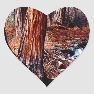 Trees Yosemite Creek Cedars Sticker