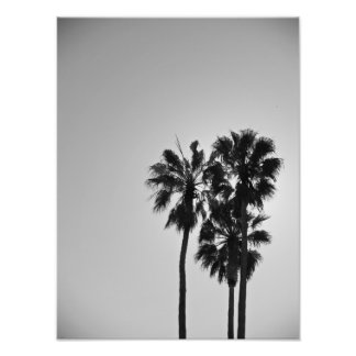 Treesome Photographic Print