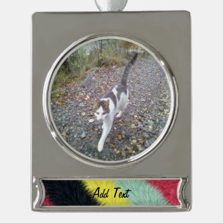 Trendy colorful pattern silver plated banner ornament