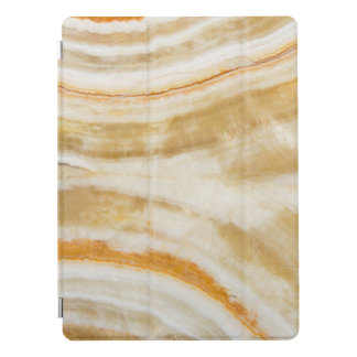 Trendy Faux Gold Marble Apple iPad Pro Cover 12.9""