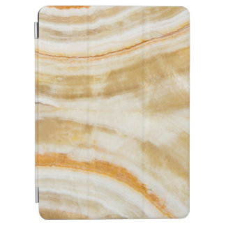 Trendy Faux Gold Marble Apple iPad Pro Cover 9.7""