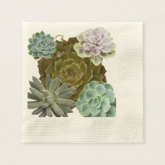 Trendy, Hen's and Chicks, Succulents Paper Napkin