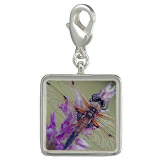 Trendy Photo Charm Bracelet Dragonfly