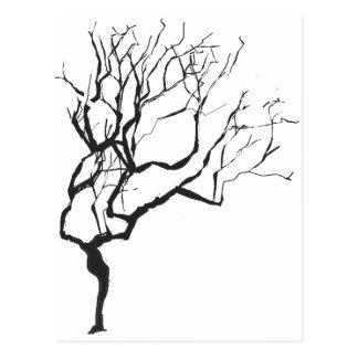 Trendy Wintery Nature Tree Post Card