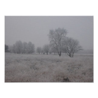 Tress in Field in Winter Poster