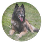 Trevuren Belgian Shepherd dog photo plate, dish