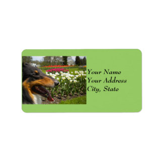 Tri Collie N Tulips Address Label