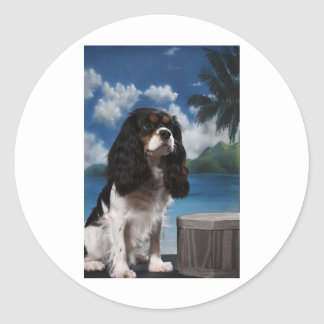 Tri color Cavalier King Charles Spaniel Stickers