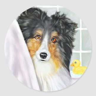 Tri Color Sheltie Bath Classic Round Sticker