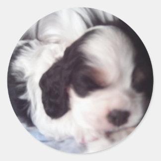 Tri colored cocker spaniel puppy round stickers