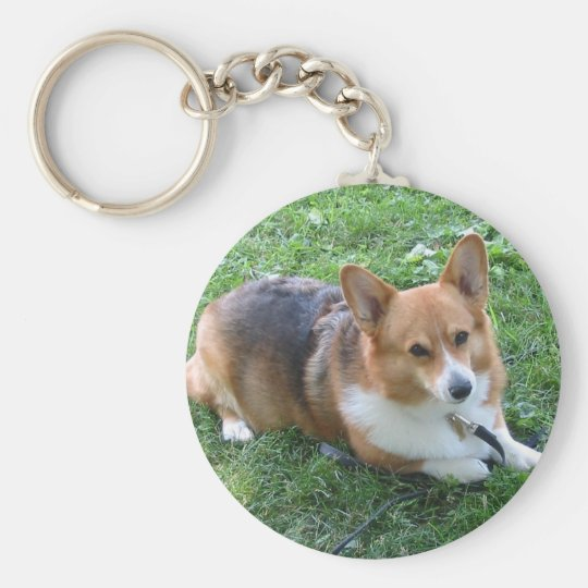 TRI-COLORED PEM IN GRASS BASIC ROUND BUTTON KEY RING