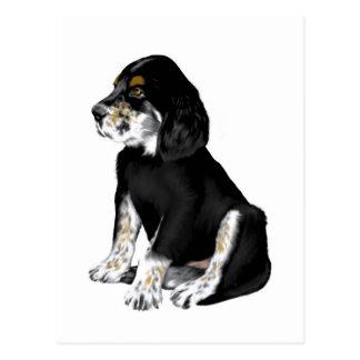 Tri-Setter Puppy Post Card