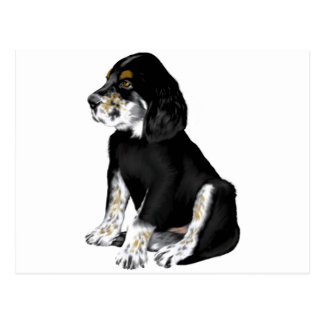 Tri-Setter Puppy Postcard