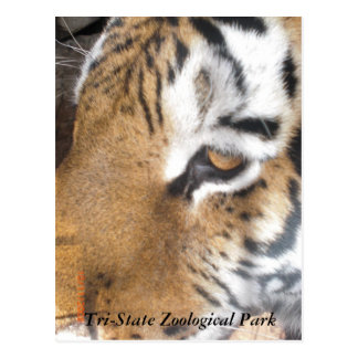 Tri-State Zoological Park Postcard