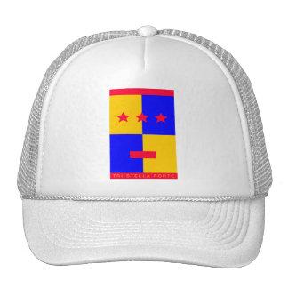 Tri Stella Forte Logo Cap