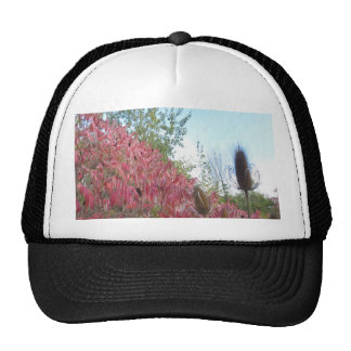Triangle Colorful Nature Print Goodluck warm fall Trucker Hat