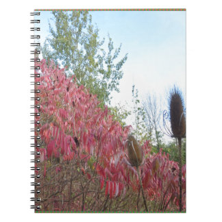 Triangle Colorful Nature Print Goodluck warm fall Notebooks