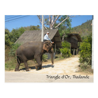 Triangle d'Or, Thailande Postcard