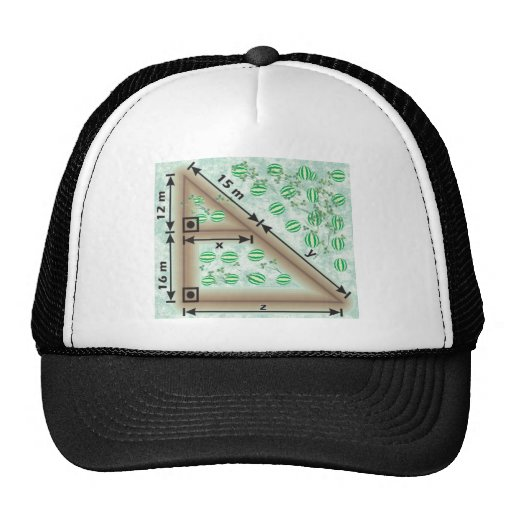 Triangle of irrigation trucker hat