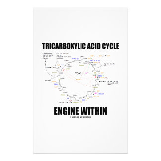 Tricarboxylic Acid Cycle Engine Within Krebs Cycle Personalized Stationery