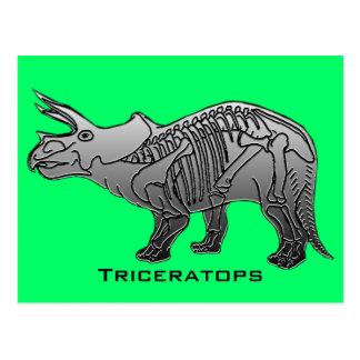 Triceratops Postcard