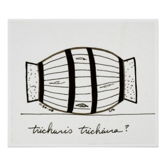 Trichuris trichiuria print