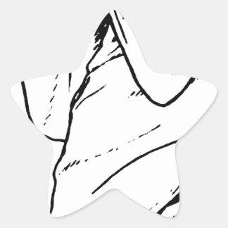 Trick or Treat Demon Occult Star Sticker