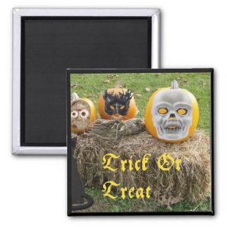Trick Or Treat Eerie Pumpkins on Haystack Square Magnet