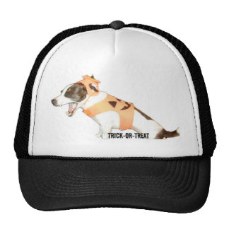 Trick or Treat Jack Russell Cap