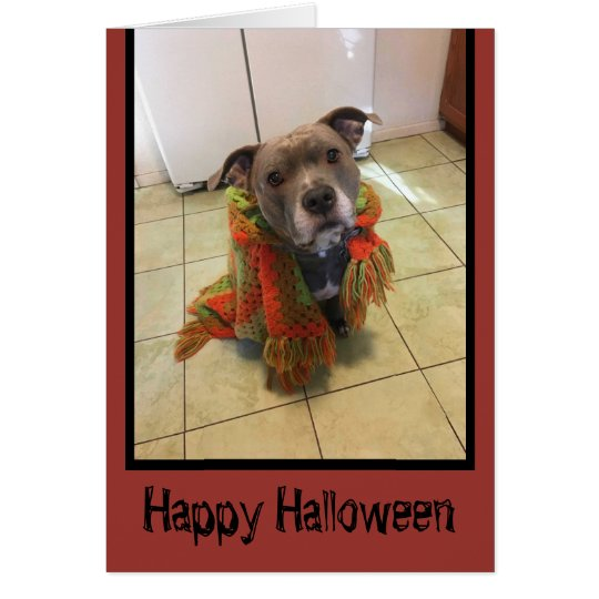 Trick or Treat Pitbull Halloween Card