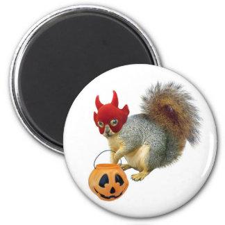 Trick or Treat Squirrel Magnet