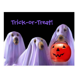 Trick-or-Treating Ghost Dogs Halloween Postcard