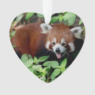 Tricksy Red Panda, Customizable Ornament